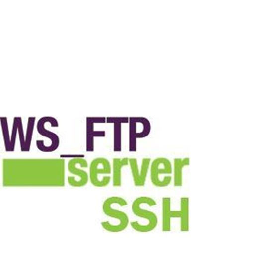 WS_FTP Server w/SSH 2-5 License + 1 Year Support